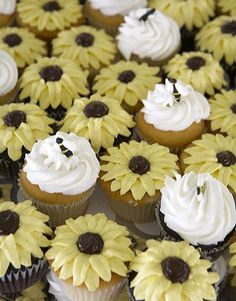 Like the idea of Bumble Bee along with sunflower cupcake design