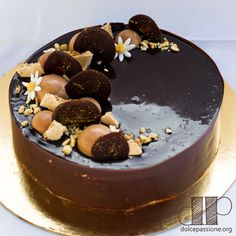 Dolcepassione Chocolate entremets