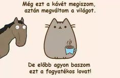 Pusheen Cat, Wholesome Memes, Funny Moments, Funny Things, True Stories, Baby Animals, We Heart It, Haha, Funny Pictures