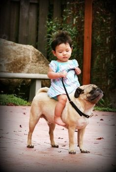 Pugs seem to have a great time with kids. Pugs are very friendly and it is natural to see Pugs and kids playing together. These pictures just seem to convey lov Amor Pug, Baby Animals, Funny Animals, Cute Animals, At Dawn We Ride, Funny Kids, Cute Kids, It's Funny, Funny Humor