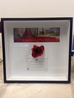 ceramic poppies filled the Tower of London's famous moat between July to November Rosie's Framers were lucky enough to have the honour of framing one! Ceramic Poppies, Tower Of London, Poppy, November, Workshop, Ceramics, Crafts, November Born, Ceramica