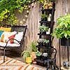 Black Planters, Wooden Ladder, Garden Ornaments, Acacia Wood, Dream Garden, Planter Pots, Plants, Beautiful, Plant
