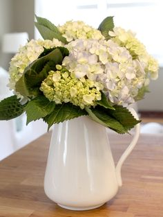 Never used to like Hydrangeas but they've grown on me.  So pretty in a little white jug!