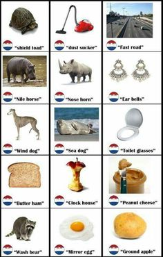 Literal Dutch words in English Literal Dutch words in English - Cute Baby Humor Memes Funny Faces, Funny Memes About Girls, Funny Quotes, Learn Dutch, Learn English, Dog Toilet, Dutch Words, Dutch People, Dutch Language
