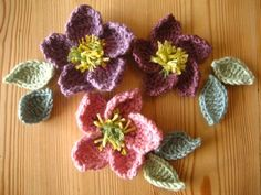 Hellebore flower free pattern | Crochet And Knitting Patterns