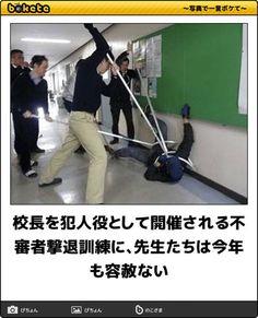 不満があるのな Funny Photos, Funny Images, Try Not To Laugh, Japanese Language, Laughter, Nostalgia, Geek Stuff, Jokes, Challenges