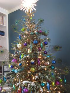 Did all silver and blue ornaments last year thinking about adding some peacock feathers to it this go around! Peacock Christmas Tree, Christmas Tree Trimming, Turquoise Christmas, Christmas Love, Xmas Tree, Beautiful Christmas, Christmas Tree Decorations, Christmas Holidays, Christmas Trees
