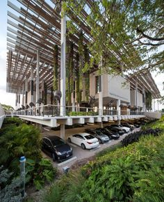 Pérez Art Museum Miami | Miami, Florida | ArquitectonicaGEO #landscape #architecture #design #green #miami #hanging #greenwall