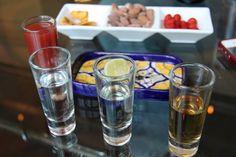 Tequila tasting set at El Bar Tequila Tasting, Wine Tasting, Tequila Bottles, Bar, Mexico Travel, Mexico City, Four Seasons, Spring Break, Liquor