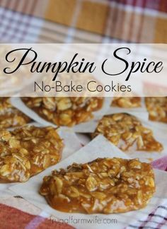 Spice No-Bake Cookies Pumpkin Spice No-Bake Cookies! I'm dying here! These cookies are so good! It's the taste of Fall in a saucepan.Pumpkin Spice No-Bake Cookies! I'm dying here! These cookies are so good! It's the taste of Fall in a saucepan. Fall Desserts, Just Desserts, Delicious Desserts, Yummy Food, Sweet Desserts, Pumpkin Recipes, Fall Recipes, Holiday Recipes, Baking Recipes