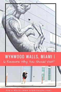 Planning to visit Miami soon, check out 6 reasons why you should visit Wynwood Walls - a home to stunning urban art, galleries, bars & much more! Usa Travel Guide, Travel Usa, Travel Guides, Travel Advice, Travel Tips, Florida Travel, Mexico Travel, Florida Vacation, Florida Food