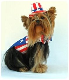 Large Fireworks 4th of July Dress Dog Puppy Teacup Pet Apparel Clothes XXXS
