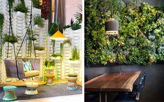 | Ideas para decorar con plantas