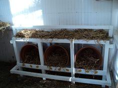 Quelques modèles de pondoirs pour nos poules