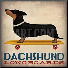 Dachshund Longboards Mounted Print by Ryan Fowler at Art.com