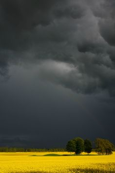 Before the Rain, Kristian Madsen Beautiful Sky, Beautiful Landscapes, Beautiful Places, Beautiful Pictures, Landscape Art, Landscape Paintings, Landscape Photography, Nature Photography, Photo D Art