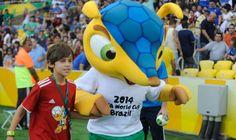 2014 FIFA World Cup official mascot: Fuleco See More pics : http://sportyghost.com/2014-fifa-world-cup-official-mascot-fuleco/