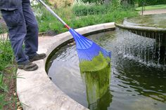 If necessary, use pond heaters or place floats on the surface of the water to keep your pond from freezing over as this can be fatal for fish and other pond life. To make a hole in frozen ponds, hold a saucepan of hot water on the surface until melted through. Do not crack the ice, as this is harmful to fish.
