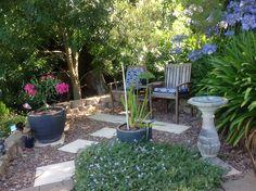 Paradise, Gardens, Plants, Garden, Plant, Garden Types, Heaven, Yards, Planting