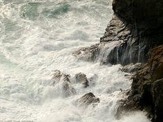 Shore of Guernsey