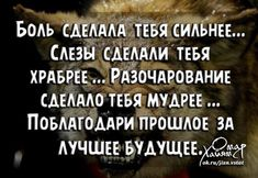 Одноклассники Diy Pinterest, Psychology, Funny Pictures, Inspirational Quotes, Relationship, Motivation, Reading, Words, Life