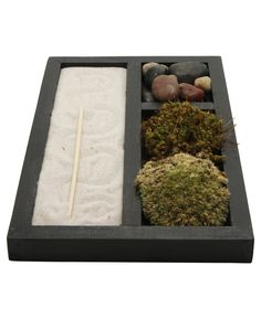 Meditation Zen garden with live air plants. Made in the USA, available at BuddhaGroove.com.