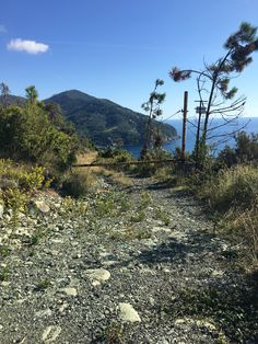 Walk 6099 - Levanto to Bonassola by the coast path - Italy Tourist Office, The Mont, Walking Routes, The Far Side, Pathways, Bouldering, Coastal, Trail, Scenery