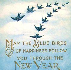 bluebird happy new year - Google Search