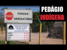 As tribos indígenas no Amazonas no século XXI Uma versão actualizada de «Sociedade contra o estado» de Pierre Clastres.
