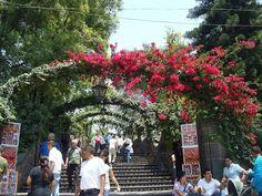 Santuário de N.Senhora de Guadalupe- Cidade do México