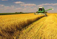 Ukrayna tarımına kredi desteği