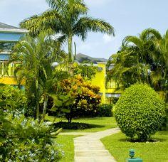 Garden In Negril, Jamaica
