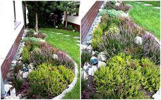 Życie to sztuka wyboru,więc jakiś temu postanowiliśmy,że zamiast kominka przeznaczamy pieniądze na skończenie niewielkiego ogródka. Kominka sie jeszcze dorobimy kiedyś,za to od wiosny do jesieni chłopaki szaleją w ogrodzie. Udało nam się zamontować im huśtawki,hamak,trampolinę - polecam tym którzy mają miejsce - potrafią 2 h z niej nie schodzić :-) na wiosnę chcemy postawić im domek drewniany do którego będzie wychodziło się po schodkach i z którego będzie się zjeżdżalnia w dół,bo taki sobie…
