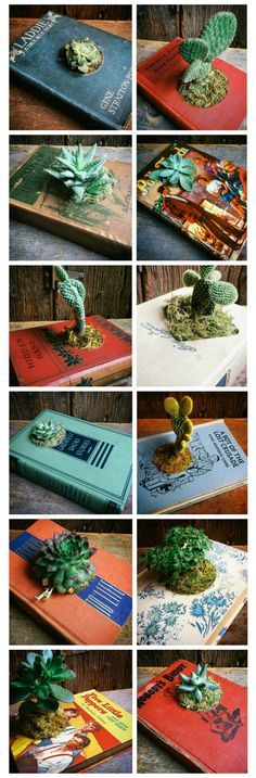One-of-a-Kind Vintage Book Planters. This is a unique gift for a plant lover!