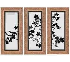 Joey Duncan 1707 Silhouette Traditional Botanical Framed Wall Art (Pack of 3) PPG-1707