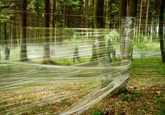 A maze constructed from cling film wrap and trees. Man made and natural starkly juxtaposed.