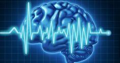 10 Healthy Brain Foods