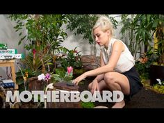 Meet the Sonic Artist Making Music with Plants: Sound Builders  https://www.youtube.com/watch?v=wYU18eiiFt4