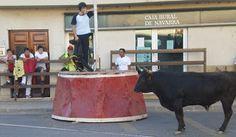 Santacara: Vacas de Murillo el Conde