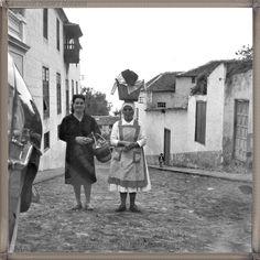 La Orotava año 1963 #canariasantigua #blancoynegro #fotosdelpasado #fotosdelrecuerdo #recuerdosdelpasado #fotosdecanariasantigua #islascanarias #tenerifesenderos