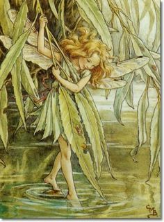 Fairy: The Willow Fairy, by (CMB) Cicely Mary Barker 1940