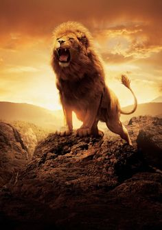 "Promotional art of Aslan roaring for ""The Chronicles of Narnia: The Lion, The Witch and The Wardrobe"""