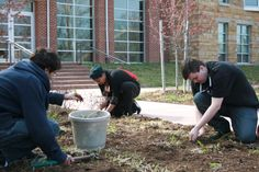 UVa-Wise campus beautification project