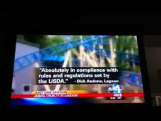 Lagoon Amusement Park - Animal Abuse News Coverage - YouTube
