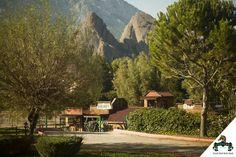 Neşe dolu harika bir gün dileriz :)  Have a nice day :) #Viverde #Hotel #Berke #Ranch #Kemer #Nature #Horse #Discovery #Enjoy #Day
