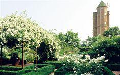 Vita Sackville West's white garden at Sissinghurst, where I learned the importance of color blocking in landscapes.