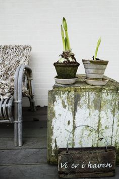 """love the weathered, lichen covered, wooden """"table""""."""