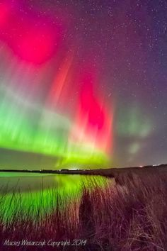 Northern lights over Caithness, Scotland. Photo by Maciej Winiarczyk.
