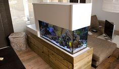 Dutch Room Divider Coral Reef Aquarium