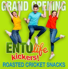 Mini-Kickers Flavored Crickets have been so popular that we built a site just for Kickers Crickets. Use hashtag #KickersCrickets for your chance to win Mini-Kickers. --- #kickerscrickets #edibleinsects #insectfood #eatinginsects #eatbugs #eatsmarter #newfood #proteinfood #sustainablefood #futurefood #climatechange #sustainability #superfood #paleosnack #healthysnack #healthydiet #sustainable #healthyfood #tasty #eat #ecofriendly #foodies #entomologist #entomophagy #cricketflour…